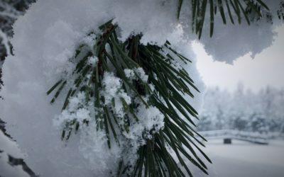 Maalämpö säästää eniten kesät talvet, helposti